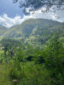 Cascade Paradise Vieux-habitant Guadeloupe