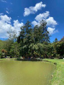 Ferme aquacole de Pointe Noire en Guadeloupe